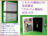 世界に1つ「絆」キープセイク メモリアル遺骨ペンダント 柴犬