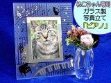 猫ちゃん専用 お写真立て 猫ちゃん ピアノ